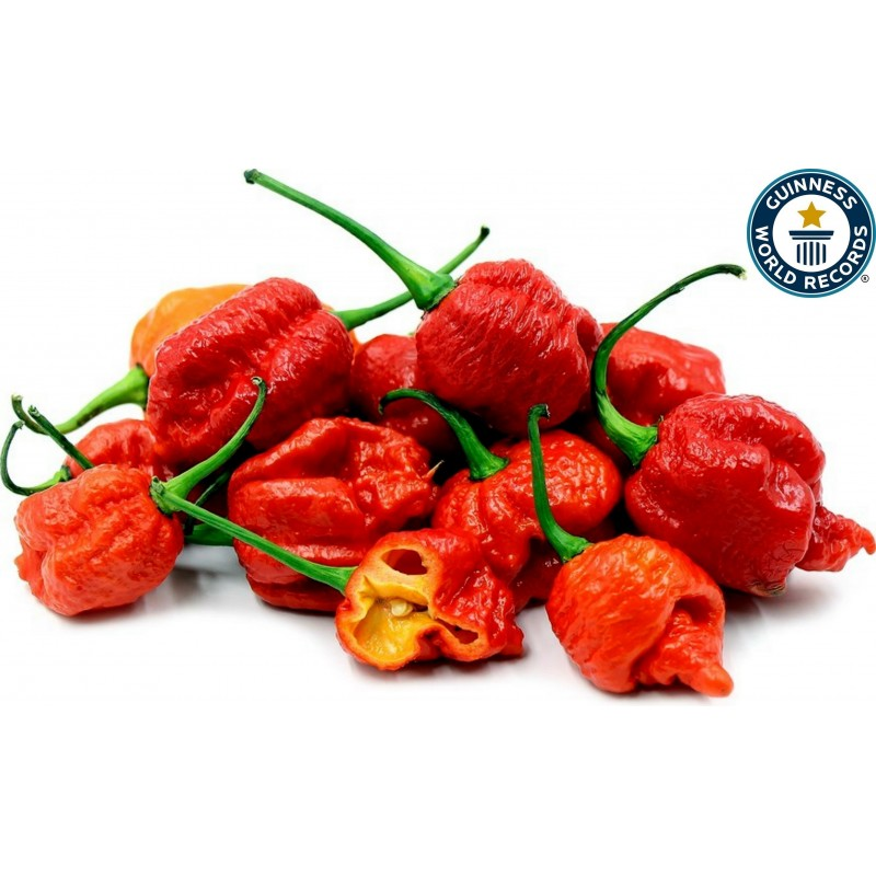 Graines de Piment Carolina Reaper rouge et jaune 2.45 - 1