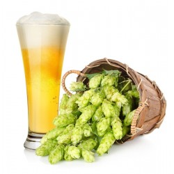 Beer Hops Seeds