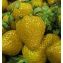 Sementes De Morango Amarelo Raras