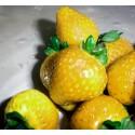 Smultron Frön 'Yellow Wonder'