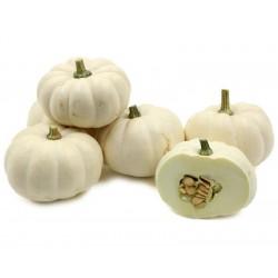 Squash  Pumpkin - BABY BOO...