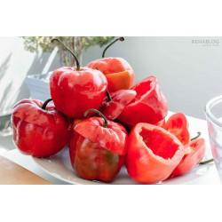 Sementes de Rocoto Manzano pimentão frescos 2.5 - 9
