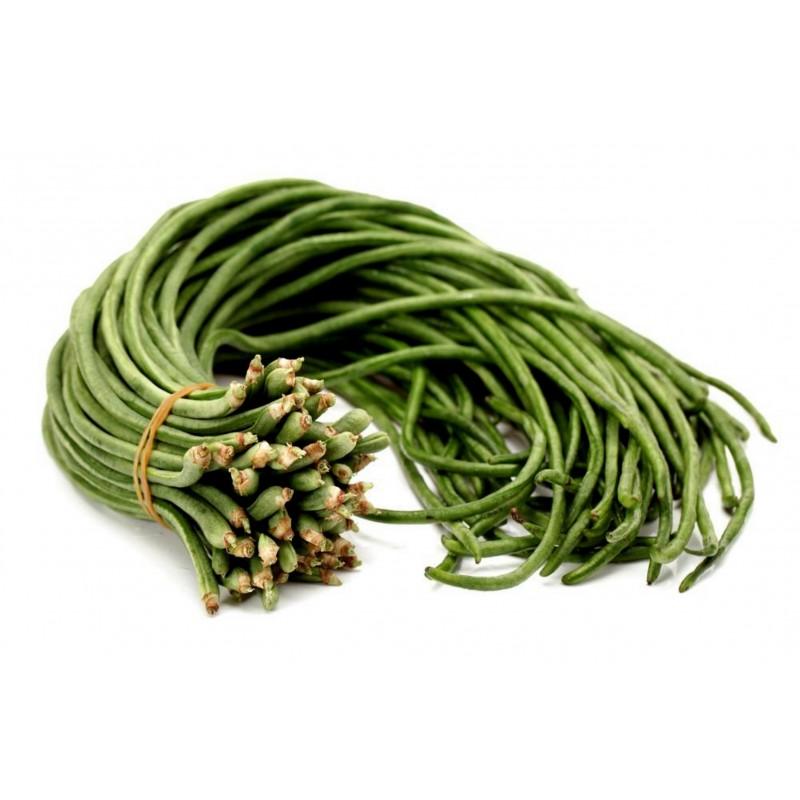 Yard Long Bean, Snake Bean, Chinese Long Bean Seeds 2.75 - 3
