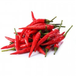 Bålgetingar (Vespa) chili frön 2.45 - 3