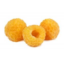 Κίτρινοι σμέουρων σπόροι (Rubus idaeus) 2.049999 - 5