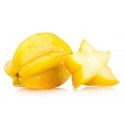 Semillas Averroha carambola Fruta Estrella 4 - 2