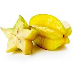 "Sternfrucht Samen ""Averrhoa carambola"" 4 - 4"