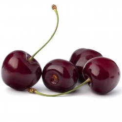 Sweet Cherry Seeds (Prunus avium) 1.45 - 5