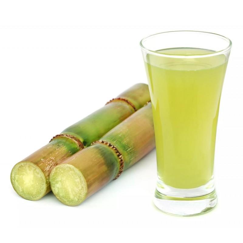 Graines de Canne à sucre (Saccharum officinarum) 3.5 - 1