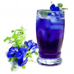 Blaue Schmetterlingserbse...