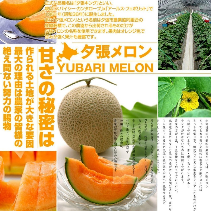 Yubari King Melon Frön Den dyraste frukten på världen 7.45 - 1