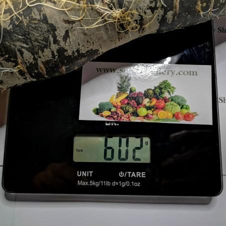Riesige Karotten Samen Purple Dragon 1.55 - 3