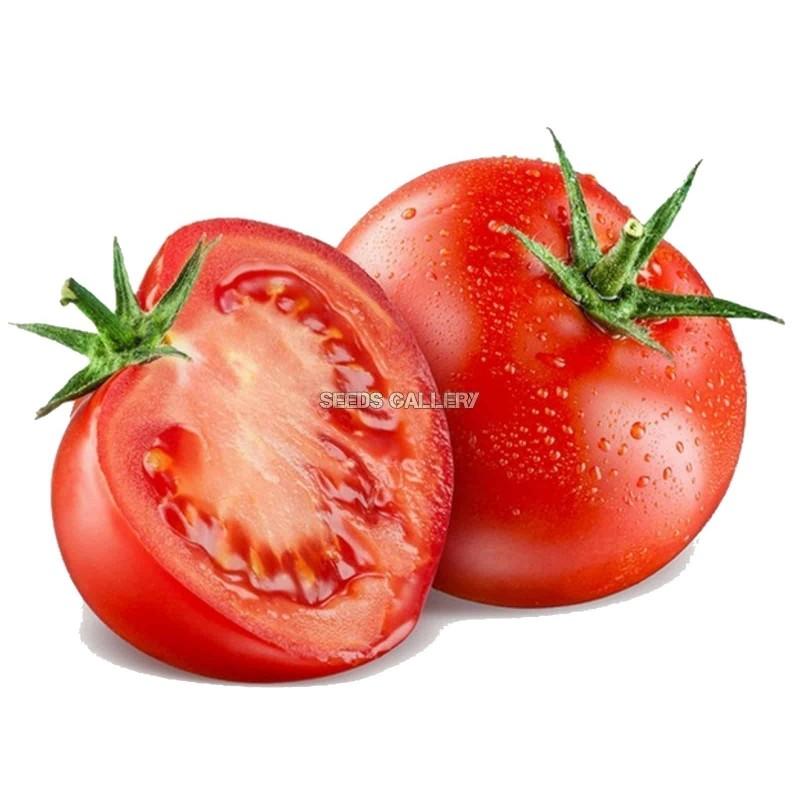 Ντομάτα σπόροι 50 σπόροι 1.5 - 4