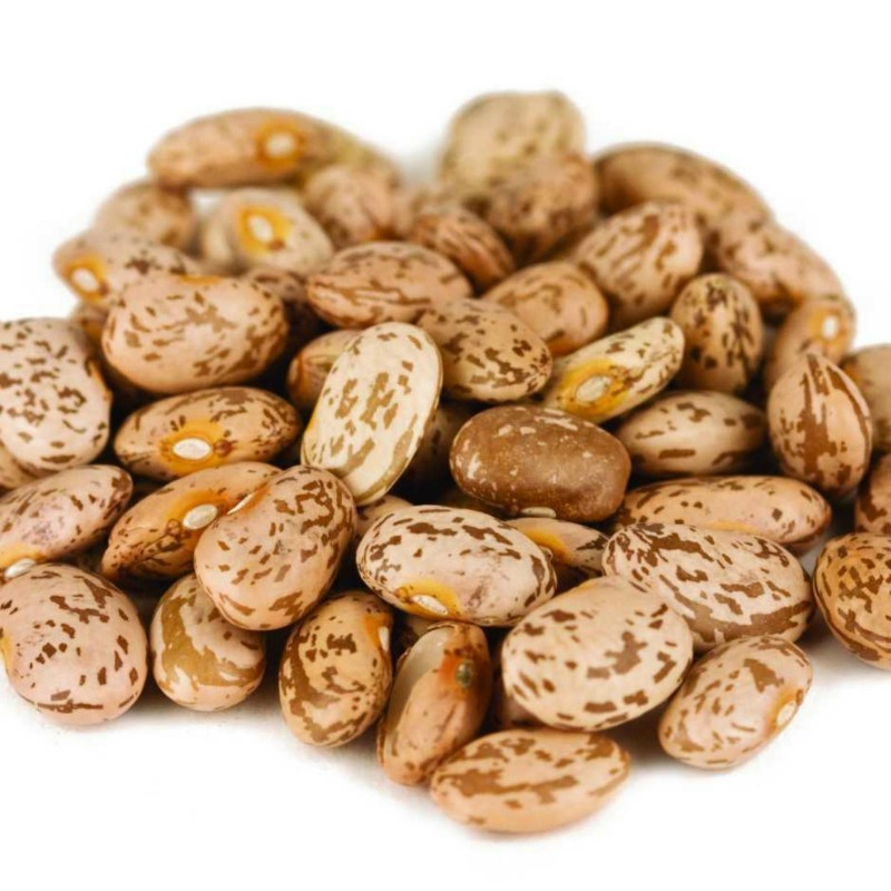 """Pinto"" Bean Seeds (Phaseolus vulgaris) 2 - 3"