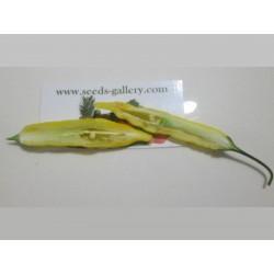 Σπόροι πιπεριά Τσίλι Lemon Drop (Capsicum baccatum) 1.5 - 4