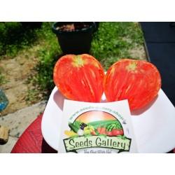 Semillas de tomate Oxheart 1.75 - 3