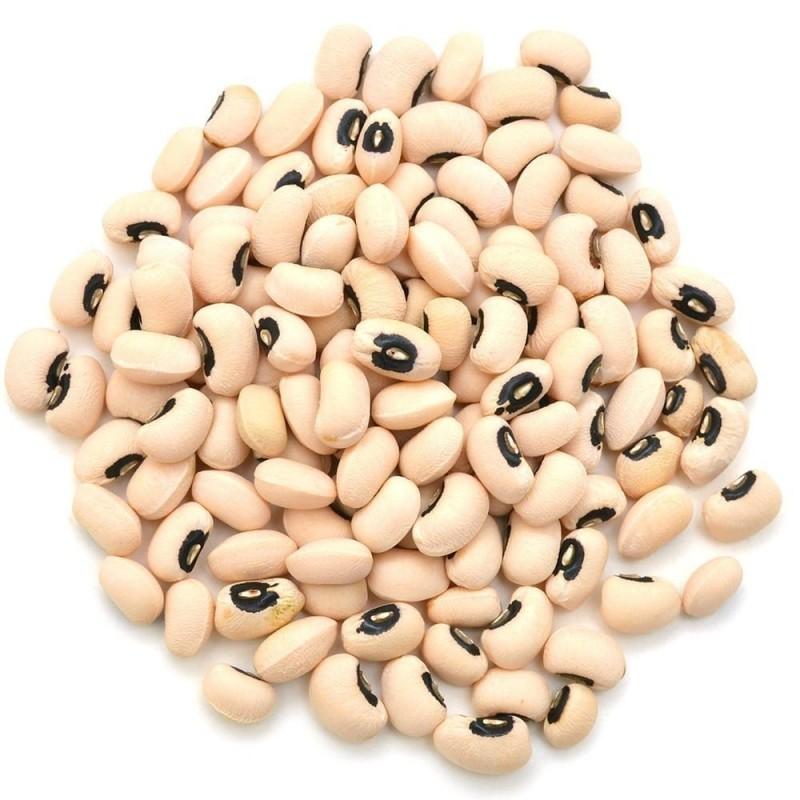 Graines de Haricots Cornilles (Vigna unguiculata) 2.5 - 1