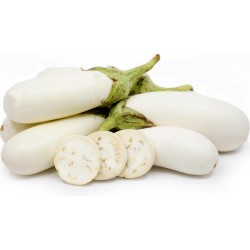 Weisse Aubergine Samen 1.85 - 1