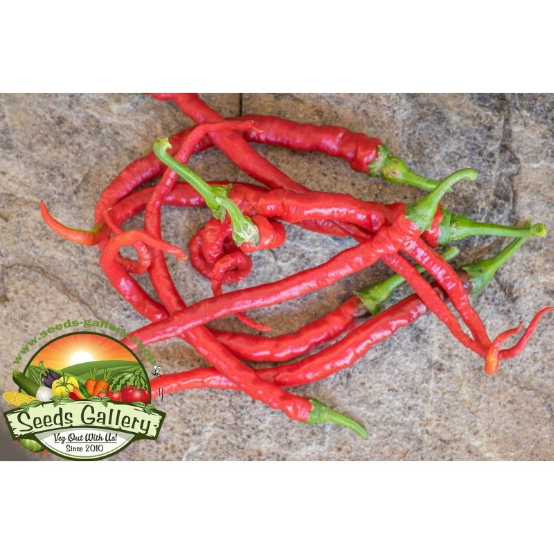 Семена сладкого перца Питон 1.65 - 4
