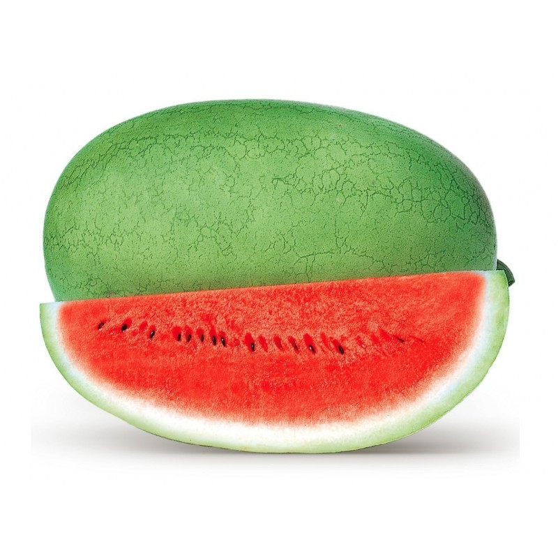 Charleston Gray Watermelon Seed 1.95 - 1