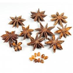 Star Anise Seeds (Illicium verum) 3.5 - 5