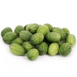 Cucamelon seeds - Mexican Sour Gherkin Cucumber 1.85 - 5