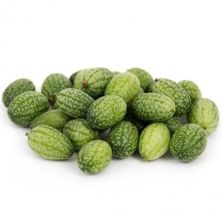 Cucamelon seeds - Mexican Sour Gherkin Cucumber 1.85 - 5