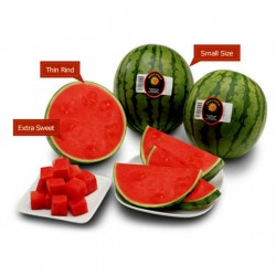 Mini Watermelon Sugar Baby Seeds 2.25 - 1