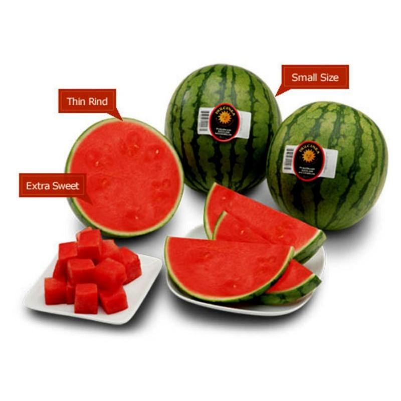 Mini vattenmelonsfrön Sugar Baby 2.25 - 1