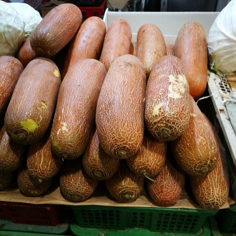 Semillas de Pepino Poona Kheera 2.35 - 1