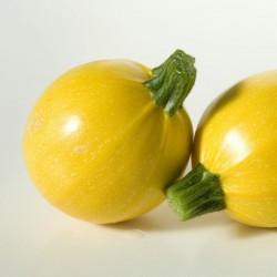 Yellow Round Squash - Zucchini Seeds 1.95 - 4