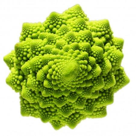 Romanesco Cauliflower Seeds 2.75 - 2
