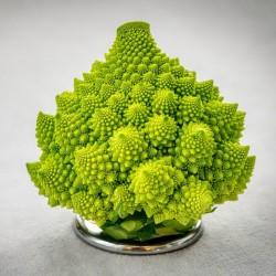 2000 Seeds Cauliflower  Romanesco 11 - 1