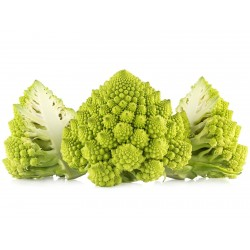 2000 Seeds Cauliflower  Romanesco 11 - 2
