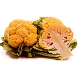 Orange Cauliflower Seeds 2.75 - 4