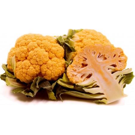 Blumenkohl orange Samen Früh + Herbst Saatgut 2.75 - 4