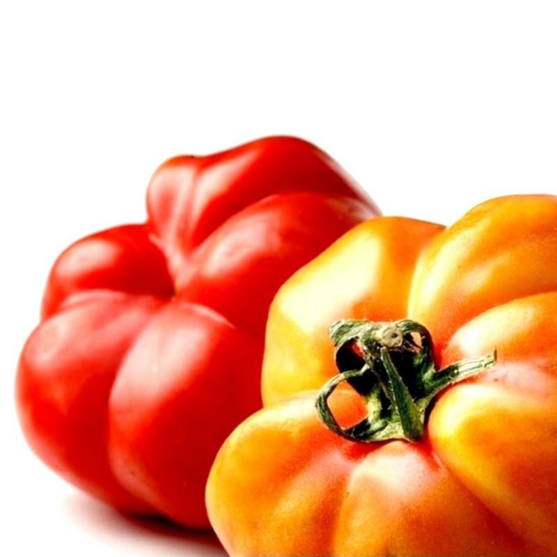 Sementes De Tomate Montserrat 1.95 - 1