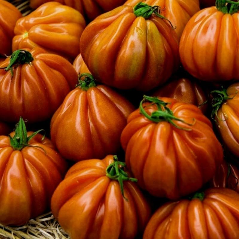 Ντομάτα σπόρος CHARLIE CHAPLIN 1.95 - 1