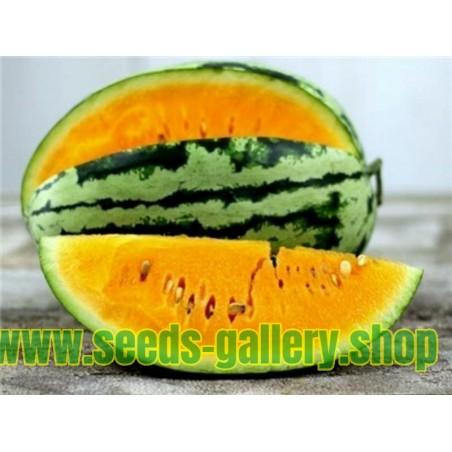 Σπόροι Καρπούζι πορτοκαλί σάρκα