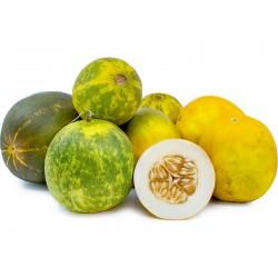 DOSAKAI indische Gurke Samen 1.75 - 1
