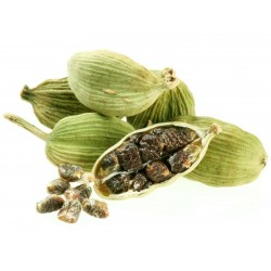 Grüne Kardamom Samen 1.95 - 1