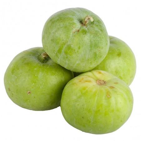 Tinda Seeds, Apple Gourd (Praecitrullus fistulosus) 2.35 - 3