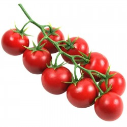 Paradiso Midi Rispen tomato seeds 1.85 - 1