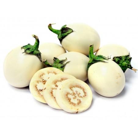 Eggplant Golden Eggs Seeds (Solanum melongena)