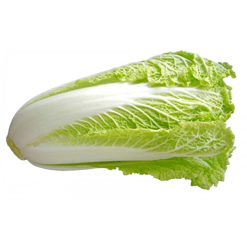 Σπόροι Κινεζικό λάχανο(Brassica pekinensis) 1.95 - 1