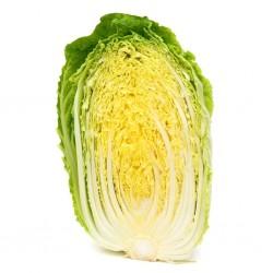 Semillas De Col China(Brassica pekinensis) 1.95 - 2