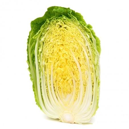 Chinese Cabbage Seeds Michihilli 1.95 - 2