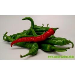 Chili Cayenne Long Slim Seeds