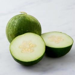 Sementes de Melon - Pepino Carosello Barattiere 2.95 - 2