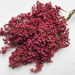 Sementes de aroeira-salso, pimenteira-bastarda (Schinus molle) 1.85 - 1